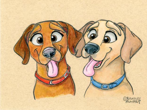 2_Pups_Pet_Portrait002_copy.JPG