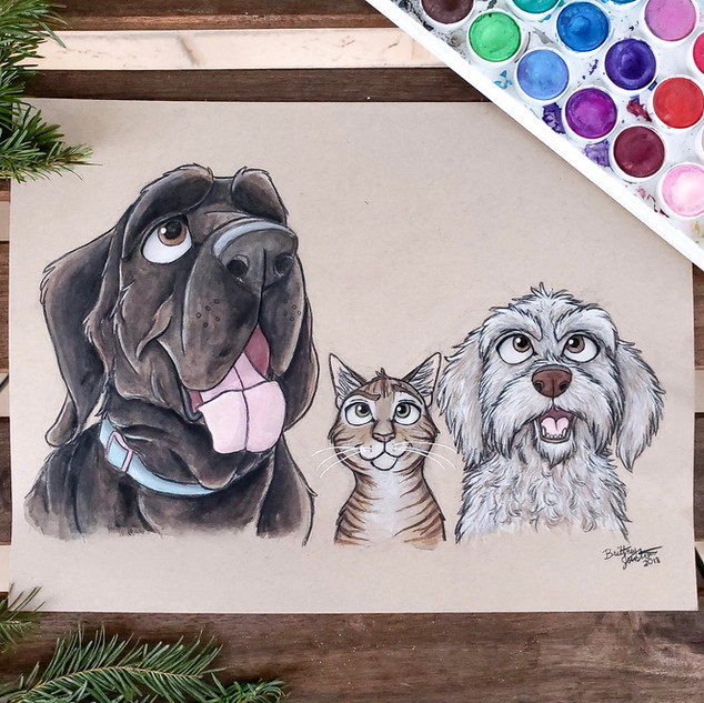 3 Pet Portrait.JPG
