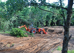 backhoe tree removal
