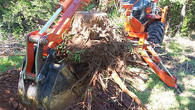 backhoe tree removal trenching service