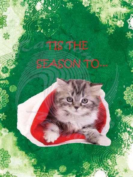 Tis The Season To...