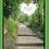 Thumbnail: Your Love Shines Through