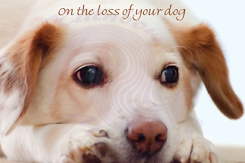 On The Loss Of Your Dog