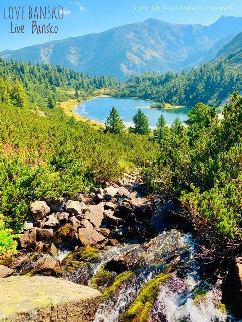 Summer Lake.jpg