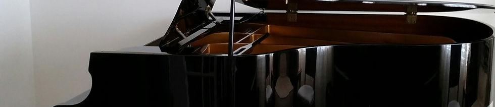 website - piano and inst.jpg
