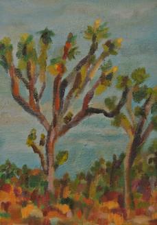 Study of the Joshua Tree, Joshua Tree National Park