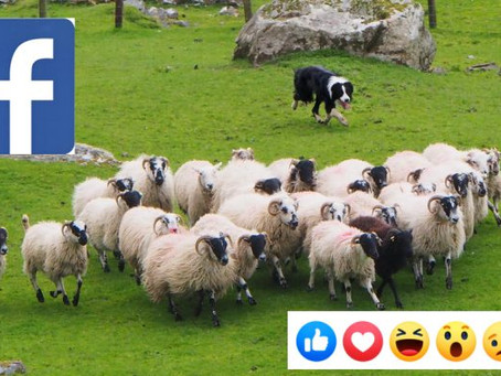 Facebook stjeler ditt privatliv
