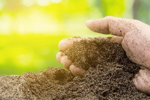 Análise de solo e recomendação