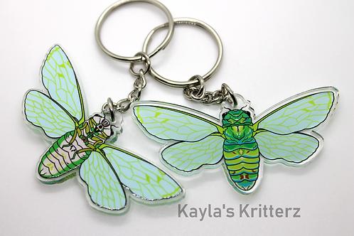 Linnes Cicada - Double Sided Acrylic Charm