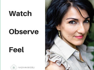 Watch Observe Feel