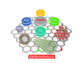 Metal-Free Carbocatalysis in Advanced Oxidation Reactions