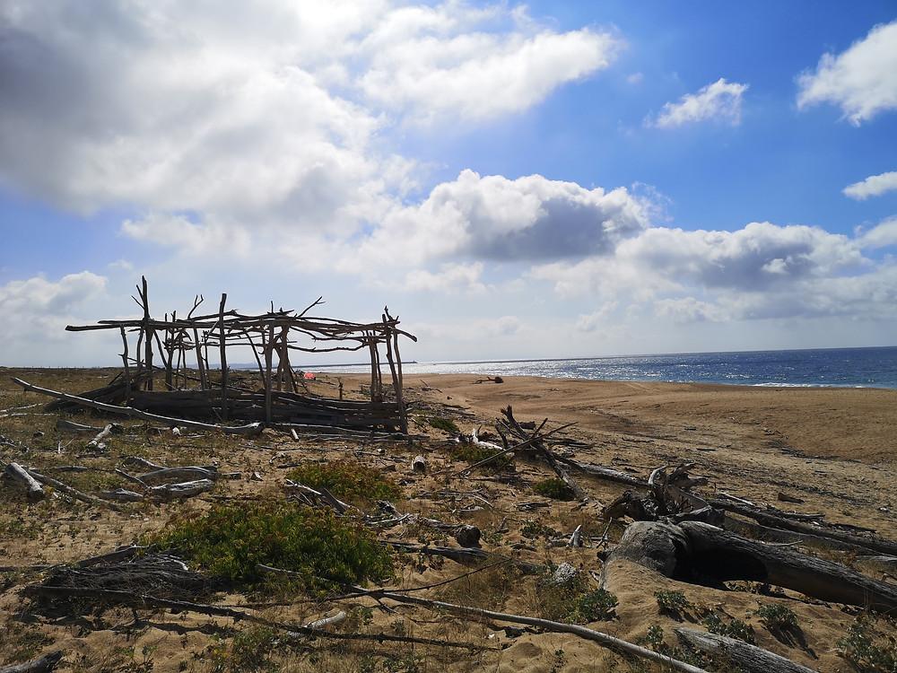Le scours collectifs de krav maga et self défense avec David Masset en outdoor à Tarnos plage