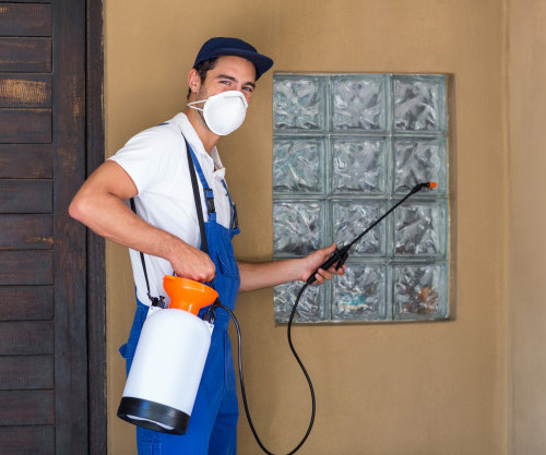 portrait-worker-spraying-chemical_107420