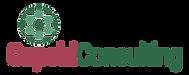 Capsid Logo
