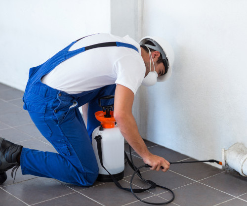 manual-worker-spraying-insecticide-pipe_