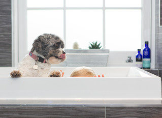 Behind the scenes on a Toddler Lifestyle Portrait Session... with Dog!