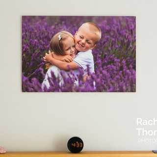 Rachel Thornhill Alumini Print
