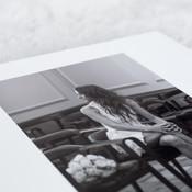 Luxury Album - HD print page sample