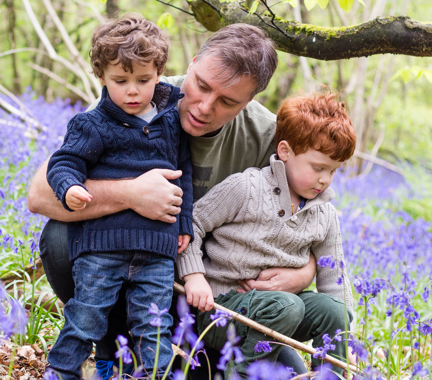 Father and Sons in Bluebells