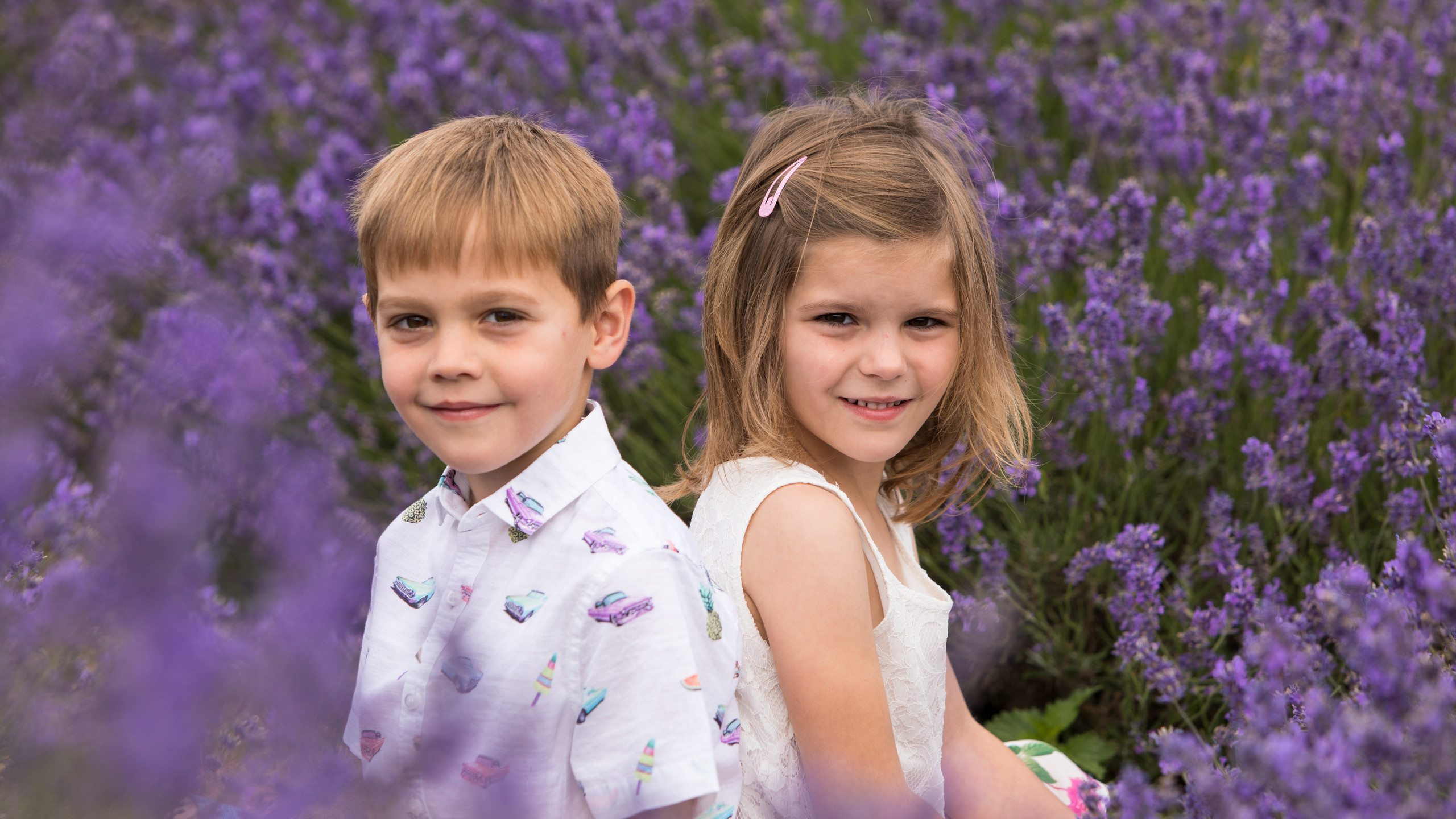 Mayfield Lavender Twins