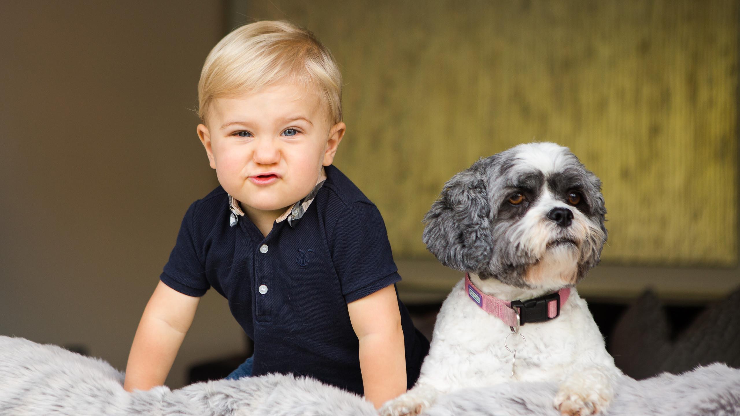 Toddler Lifestyle Photoshoot Cheeky