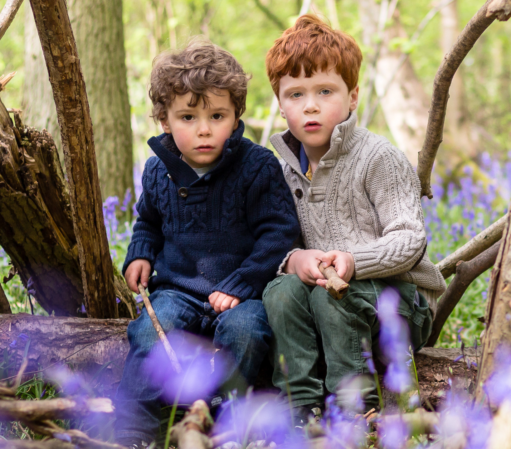 Young Brothers in Bluebells