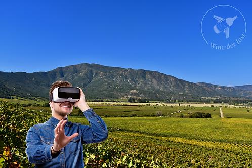 Valle de Colchagua, innovación en vinos
