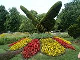 butterflyCCDE.png