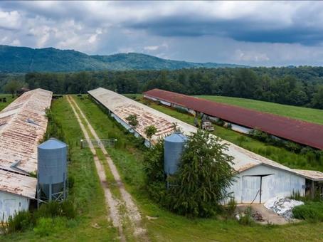 194.5 AC Farm Old Salisbury Rd Wilkesboro NC 28659