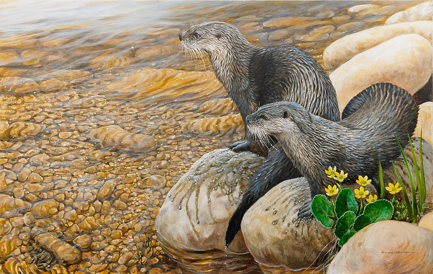 Waters Edge Otters Painting by Wildlife Artist Richard Whittlestone