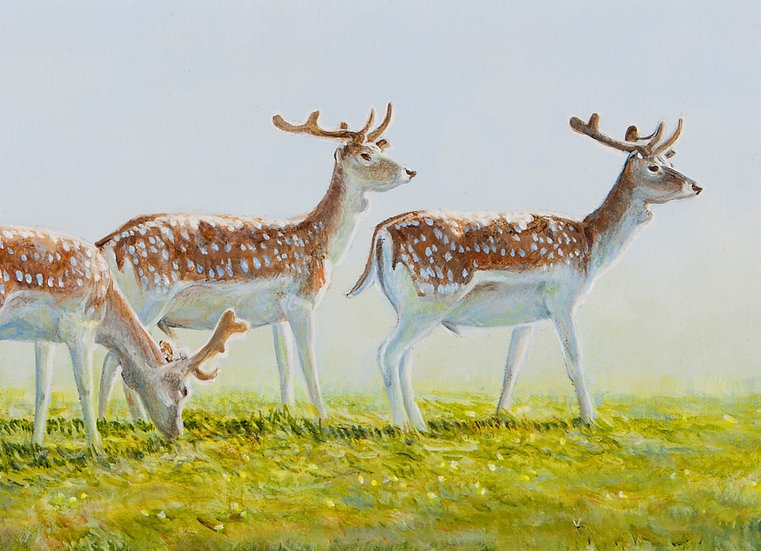 Wildlife Greetings Cards by Artist Richard Whittlestone (Fallow Deer in Velvet))