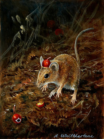 Tommy Cooper Mouse First Impressions Print by Wildlife Artist Richard Whittlestone