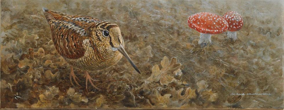 Woodcock Toadstools Bird Painting by Wildlife Artist Richard Whittlestone