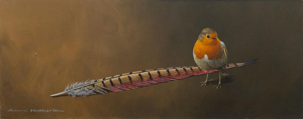Robin Pheasant Feather Bird Print by Wildlife Artist Richard Whittlestone