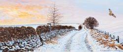 2817 Buzzard Over a Winter Lane (2) copy