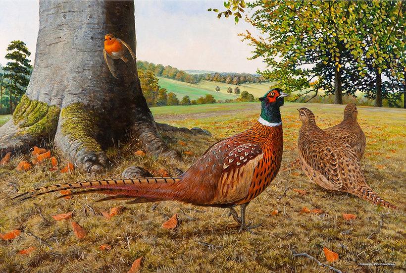 Pheasants Chatsworth Gardens Painting by Wildlife Artist Richard Whittlestone