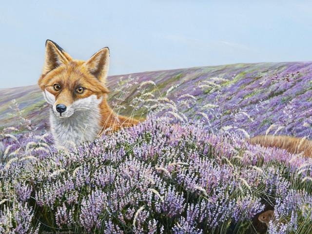 Richard-Whittlestone-Cards-On-the-Foxpath