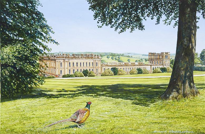 Chatsworth Pheasant
