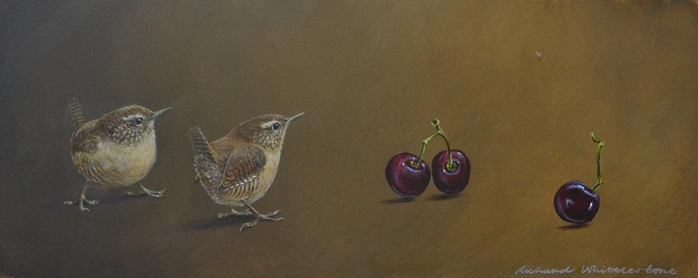Wrens Cherries Bird Painting by Wildlife Artist Richard Whittlestone