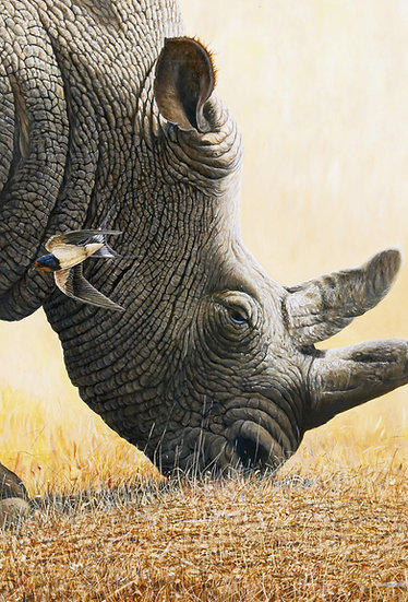 Out of Africa Canvas Print by Wildlife Artist Richard Whittlestone