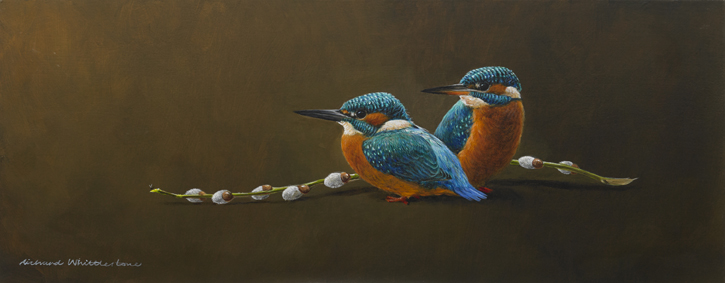 Kingfishers with Pussy Willow