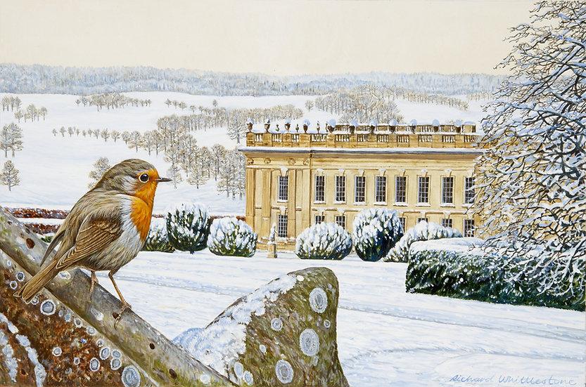 Chatsworth Robin