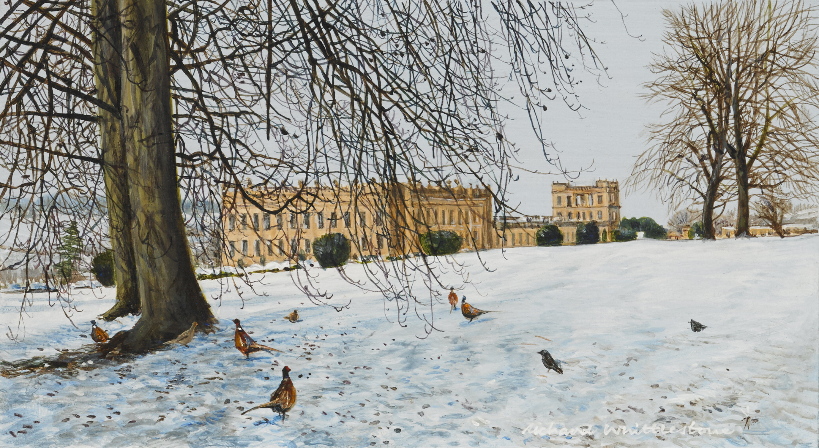 Pheasants and Jacjdaws on Chatsworth Law