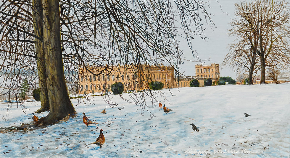 Pheasants and Jackdaws on Chatsworth Lawns