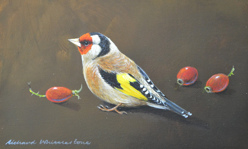 Goldfinch and Hips