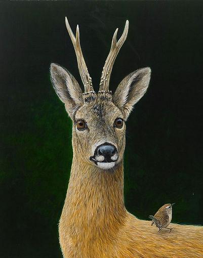 Roe Buck and Wren RW2617P