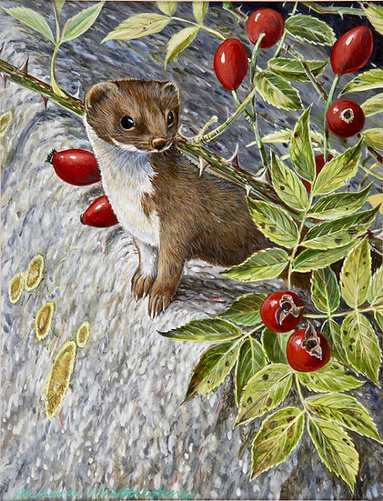 On the Lookout Print by Wildlife Artist Richard Whittlestone