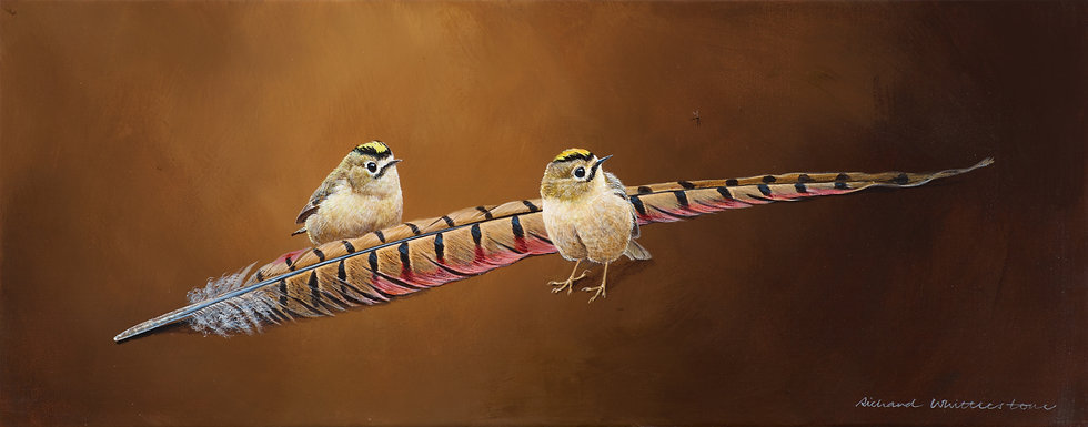 Goldcrests and Pheasant Feather