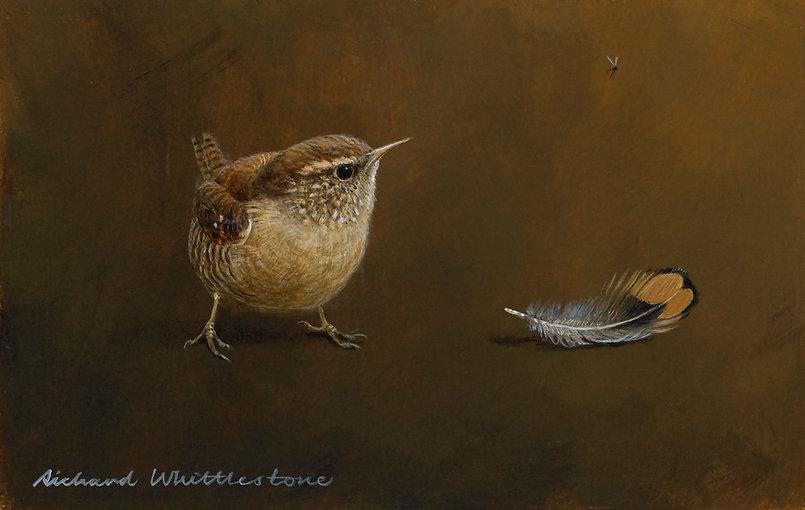 Wren and Pheasant Feather RW525P