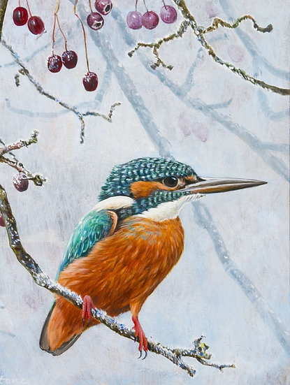 Wildlife Greetings Cards by Artist Richard Whittlestone (Frosty Kingfisher)